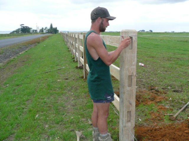 3 Rail Amp Post Fencing Karaka Horse Stud Beams Amp Timber